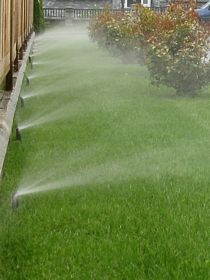 Irrigation Sprinkler Spray on Grass